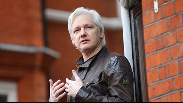 Wikileaks' Julian Assange could face US charges, court documents suggest
