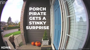'I filled up a box full of dog poop': Oregon porch pirate gets a stinky surprise