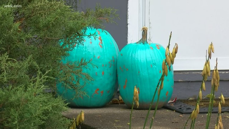Teal and blue pumpkins: The meaning behind the colors