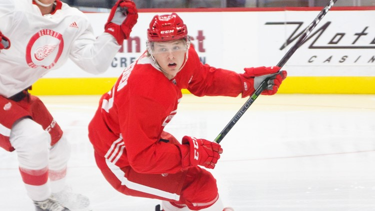 Red Wings prospect from Sweden has hilarious road trip mix-up while trying to get to Grand Rapids