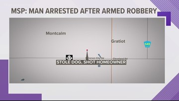 Dog purchase in Montcalm Co. leads to shootout, police chase