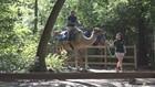 School Choice Week: Zoo School