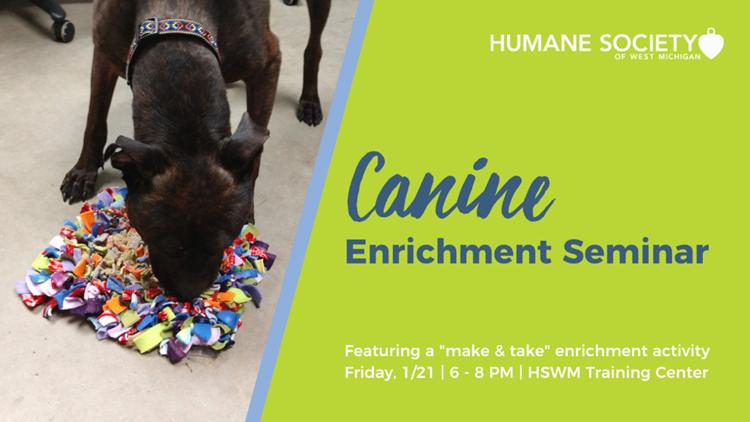 Canine Enrichment Seminar
