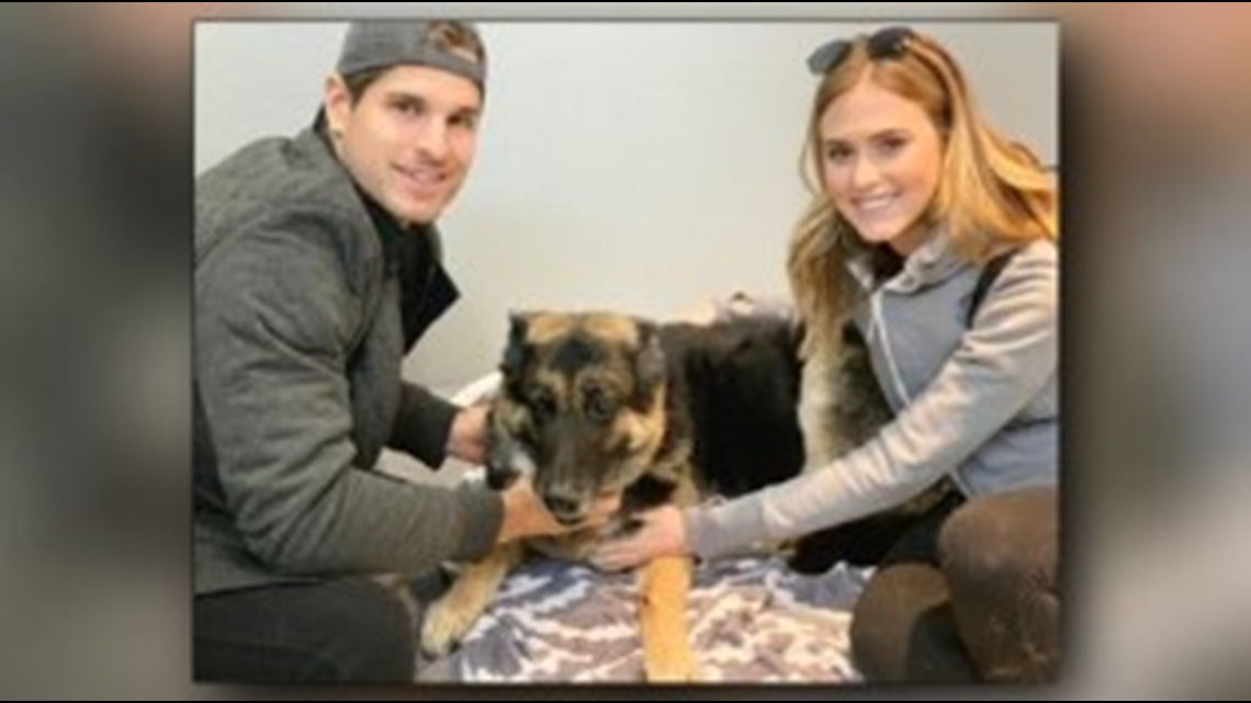 One Good Thing: Giffins player and girlfriend give senior dog a new home