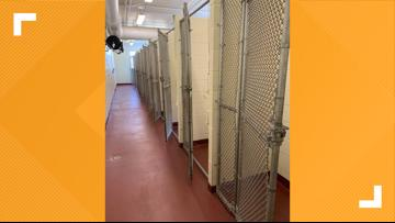 Ionia County Animal Shelter is empty! All adoptable dogs were placed into homes during COVID-19 crisis