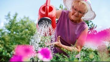 Seniors dig into summer: Gardening partnership provides community building experience