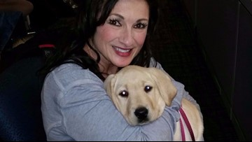 Meet CJ, WZZM 13's Paws with a Cause service dog in training