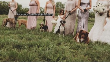 What's Trending: A wedding twist, toddlers in hardware stores