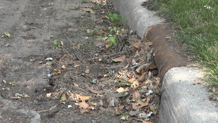 'Safety issue on many levels' | Clearing storm drains stops flooding, mosquitos