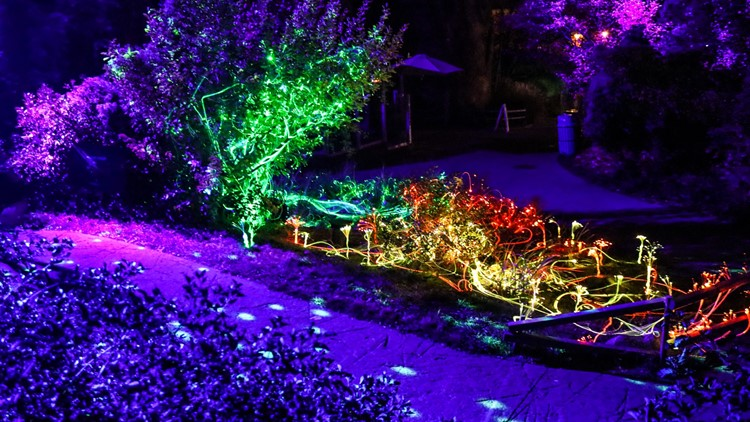 Michigan business expands wildly popular light show born during pandemic