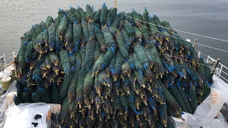 Chicago Harbor Uscgc Mackinaw Delivering Christmas Trees 2020 US Coast Guard Cutter Mackinaw delivering 1,200 Christmas trees to