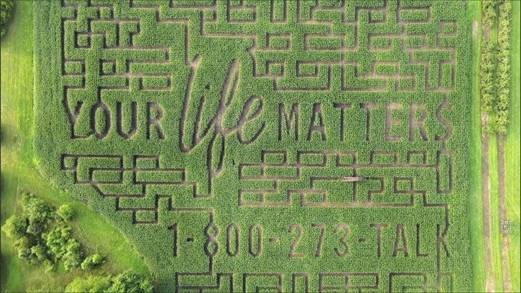 'THERE'S ALWAYS A WAY OUT': Message in Michigan maze supports suicide prevention