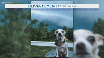 13 On Your Side forecast: Breezy evening