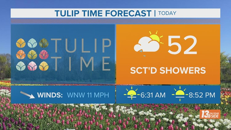 Tulip Time forecast