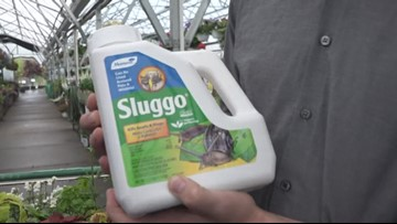 Keep the pests away and keep your garden growing