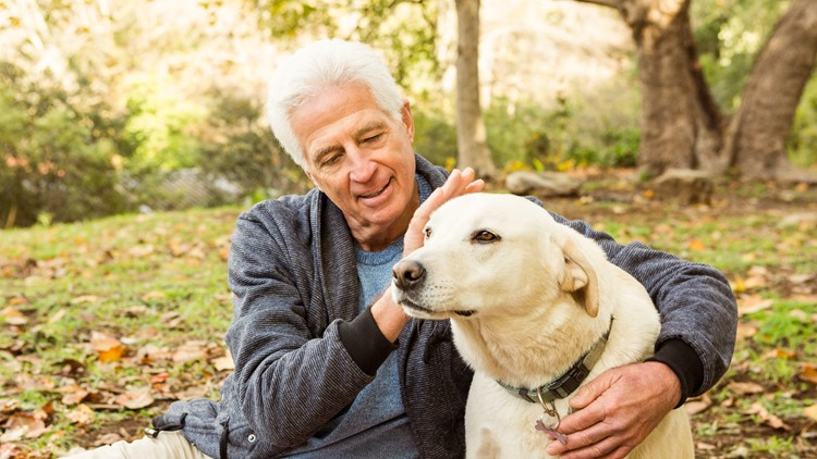 Dog owners fare better after heart attack, study says
