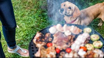 Memorial Weekend: Backyard barbecue dangers
