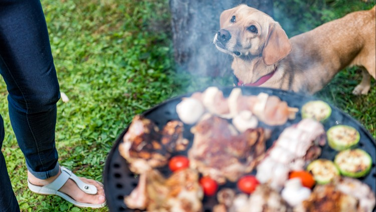 Memorial Weekend: Backyard barbecue dangers