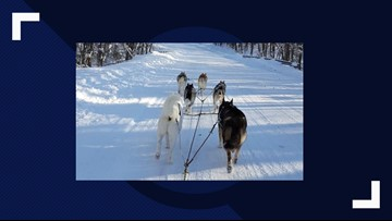 Kids gets hands-on education on the Iditarod