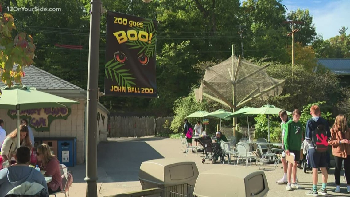 What's Up This Weekend: Spooky fun at the zoo, festivals, and trunk-or-treat