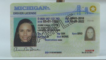michigan secretary of state drivers license
