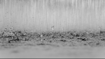 Rainfall floods Kalamazoo homes and closes roads