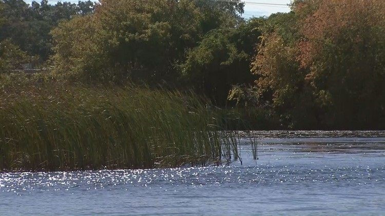 Is wood from Muskegon Lake contaminated?