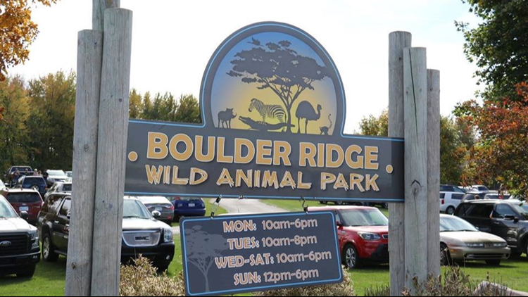 Boulder Ridge welcomes two baby zebras, offers 10 year anniversary discount