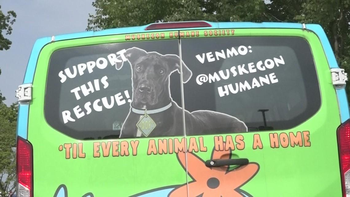 White Lake Community picnic raising money for Muskegon Humane Society