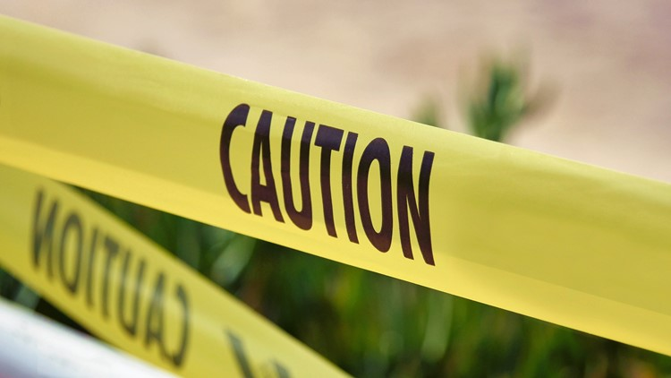2 Kalamazoo 13-year-old boys shot by masked man