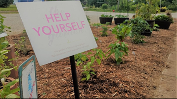Residents make plea to save community garden in Lowell