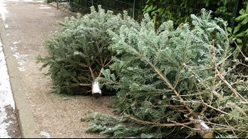 Here's where you can get rid of your Christmas tree in Grand Rapids