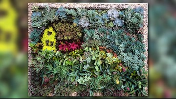 Greenthumb: Gardening as a work of art