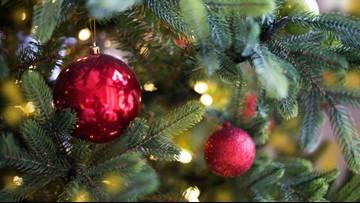 Green Thumb: O Christmas Tree!