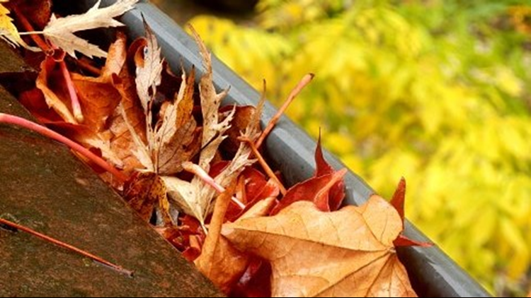 Avoid the annual chore of cleaning fall leaves out of the gutters with LeafGuard