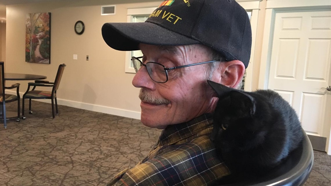 A Vietnam vet and a support cat formed an 'amazing' friendship at an Allegan County retirement home