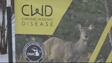 Chronic wasting disease could reduce number of deer hunters