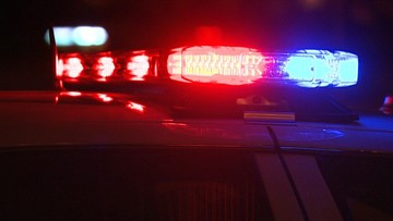 Driver dies after vehicle crashes into tree