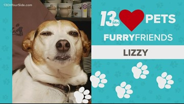 13 Loves Pets: Lizzy