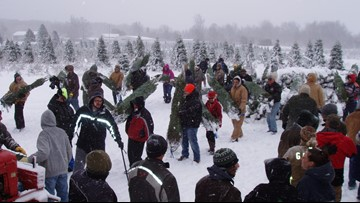 Wahmhoff Farms provides Christmas trees for military families in North Carolina