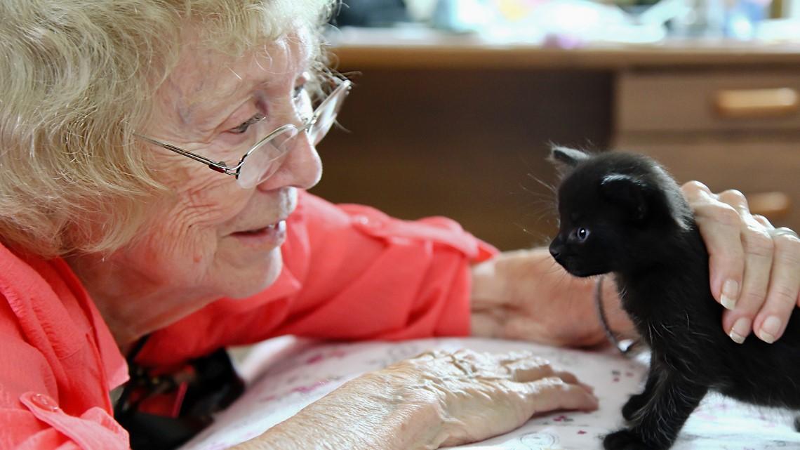 Volunteering Wednesday: Pet Visitor Program at Emmanuel Hospice