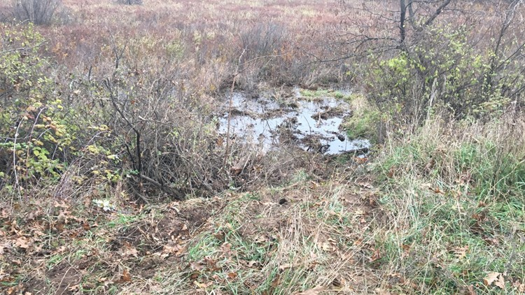 swamp barry county breakin pursuit