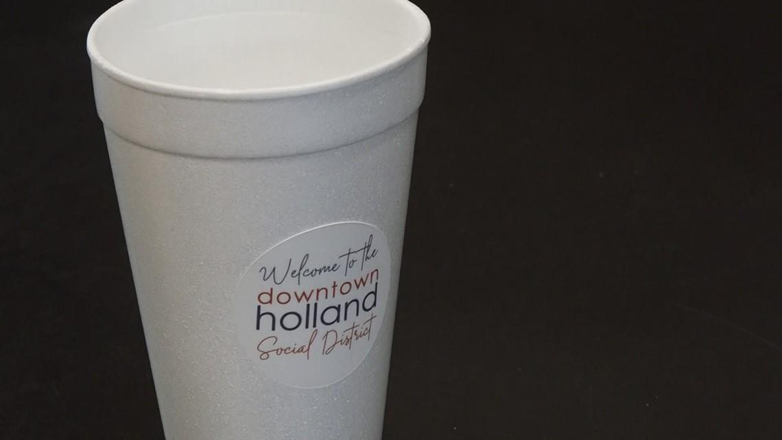 Holland Social Zones