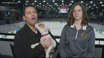13 Loves Pets: Hear from Pound Buddies