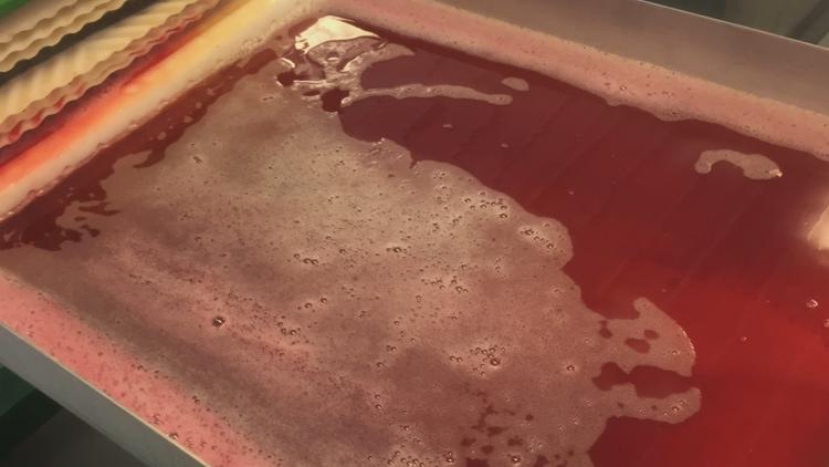 MSU professor changing cider's taste, breeding Red-Fleshed Apples for juice