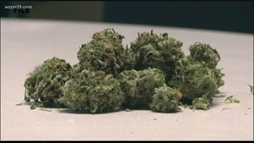 Grand Rapids Planning Commission approves first medical marijuana business license