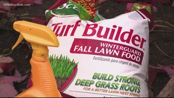 Greenthumb: Prepare your lawn for winter