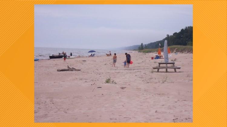 The beach in 2011
