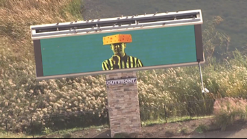 Lions fans buy billboards with cheesehead referees