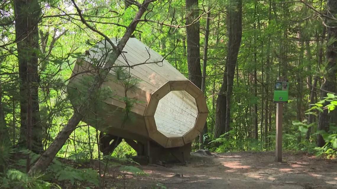 'Nature's Megaphone': Odd-shaped audio device amplifies Michigan woods